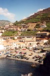 Madeira - fishing harbour under the banana plantations / Camara de Lobos: porto piscatório sob os bananais - photo by M.Durruti
