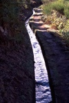 Madeira - levada - water channel - photo by F.Rigaud