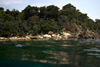 Malaysia - Pulau Perhentian / Perhentian Island: coast and the waterline (photo by Jez Tryner)