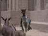 Mali - Bozo town: street scene - woman and donkeys - photo by A.Slobodianik