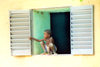 Djenn�, Mopti Region, Mali: kid observing the monday market from his window - photo by N.Cabana