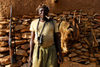 Bandiagara Escarpment, Dogon country, Mopti region, Mali: hunter with his weapon, pipe and trophies - photo by J.Pemberton