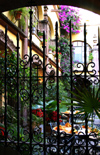 Mexico - San Miguel de Allende (Guanajuato): Hotel San Francisco - courtyard through grille (photo by R.Ziff)