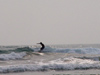 Mexico - Tampico: surfer on Escolera beach (photo by A.Caudron)