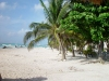 Mexico - Playa del Carmen / PCM (Quintana Roo state): beach (photo by A.Caudron)