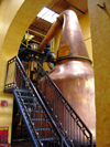 28  Mexico - Jalisco state - tequila - cuervo distillery - distillation kettles - double distillation - photo by G.Frysinger
