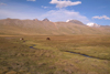 Mongolia - Yamatii valley: pasture - photo by A.Summers
