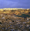 Morocco - Fez: view of the old town - photo by W.Allgower
