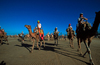 Morrocco, Marrakesh: camel race on the beach - Discovery Channel Eco-challenge - photo by S.Egeberg