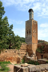 Morocco / Maroc - Rabat: Chellah necropolis - minaret of the Merenid mosque and ruins of Sala Colonia - photo by J.Kaman