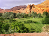 Morocco / Maroc - Dades gorge: green fields - photo by J.Kaman
