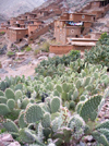 Morocco / Maroc - Tizi Aguersioual (Marrakesh Tensift-Al Haouz region): the village and the cactus - Imlil valley - photo by J.Kaman