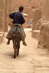 Morocco / Maroc - Ait Benhaddou: casbah taxi - donkey - photo by J.Banks