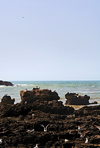 Morocco - Essaouira: port - rucks, gulls and the Atlantic - photo by M.Ricci
