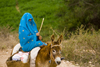 Souss-Massa National Park, Morocco: woman riding a donkey - photo by Sandia