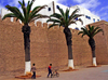 Mogador / Essaouira - Morocco: peaceful afternoon - walls and palm trees - photo by Sandia