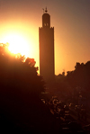 Morocco / Maroc - Marrakesh / Marrakech / Marraquexe: magnificent minaret of the Koutoubia mosque at sunset - silhouete of minaret - Unesco world heritage site - photo by F.Rigaud