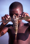 Mozambique / Moçambique - Benguerra: boy with flying fish / miudo com peixe voador - photo by F.Rigaud