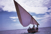 Ilha de Moçambique / Mozambique island: dhow on the Indian ocean / Baía de Mossuril - photo by F.Rigaud