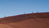 Namib Desert - Sossusvlei, Hardap region, Namibia, Africa: Hikers on Big Daddy sand dune - photo by B.Cain