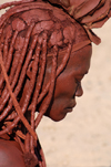 Namibia: Himba Woman close-up with braided, ochre covered hair, Kunene region - photo by B.Cain