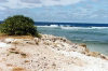Nauru: rocky beach - photo by G.Frysinger