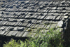Nepal - Langtang region - roof made with planks of wood and stones - photo by E.Petitalot