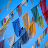 Kathmandu, Nepal: bird and prayer flags - Vajrayana Buddhism - photo by W.Allgöwer