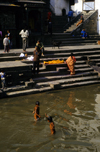 Kathmandu, Nepal: Pashupatinath temple - kids bathe in the Bagmati river near the cremation platforms - photo by W.Allgöwer
