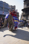 Kathmandu, Nepal: elephant campaigning - World AIDS Day - photo by W.Allg�wer