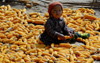 Nepal - Langtang region - toddler sitting on a carpet of corn - photo by E.Petitalot