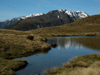 17 New Zealand - South Island - Kelly Range, Arthur's Pass National Park - Canterbury region (photo by M.Samper)