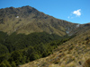 22 New Zealand - South Island - Ben Lomond - Otago region (photo by M.Samper)