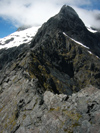 30 New Zealand - South Island - Homer Saddle, Fiordland National Park - Southland region (photo by M.Samper)
