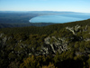 33 New Zealand - South Island - Hump Ridge - coastal view, Fiordland National Park - Southland region (photo by M.Samper)