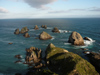 69 New Zealand - South Island - The Nuggets, Nugget Point - Otago region (photo by M.Samper)