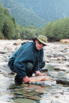 New Zealand - South island: West Coast - Fisherman with trout - photo by Air West Coast