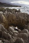 New Zealand - New Zealand -South island - Punakaiki: West Coast - pancake rocks (photographer: Rob Neil)