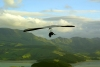 New Zealand - South island: a hang glider soars above the scenic valleys near Christchurch (photographer Rod Eime)