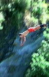 New Zealand - South Island - Queenstown: bungee jumping (photo by Elior Ben-Haiem)