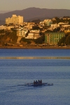 New Zealand -  North island - Wellington: rowers on the harbour - sports - rowing (photographer R.Eime)