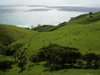 New Zealand - North Island - Coromandel Peninsula Waikato region: grass and ocean - photo by M.Samper