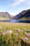 Norway / Norge - Lofoten islands (Nordland): spring field (photo by Juraj Kaman)