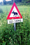Norway / Norge - Nordland region: beware of moose - road sign (photo by Juraj Kaman)