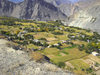 Hunza Valley - Northern Areas, Pakistan: agriculture in the scarce fertile land surrounded by mountains - Karakoram Highway - photo by D.Steppuhn