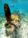 Ngaremediu Reef, Koror state, Palau : WWII Mitsubishi A6M Zero fighter of the Imperial Japanese Navy Air Service - underwater image - photo by B.Cain