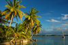 Palmyra Atoll: palms and yacht - late afternoon - photo by NOAA (in P.D.)