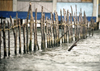 Panama - comarca Kuna Yala - San Blas Islands: traditional fence - photo by A.Walkinshaw
