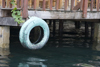 Panama - Bocas del Toro - Old tire hanging on a wooden dock - photo by H.Olarte