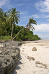 Panama province - white sand beach - sea erosion control using gabions - photo by H.Olarte